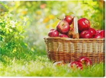 Tableau sur toile Pommes organiques dans un panier extérieur