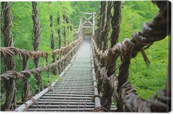 Tableau sur toile Pont de lianes de l'été