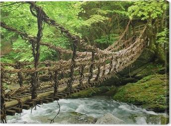 Tableau sur toile Pont de lianes et bambou Kazura-bashi à Oku Iya, Shikoku