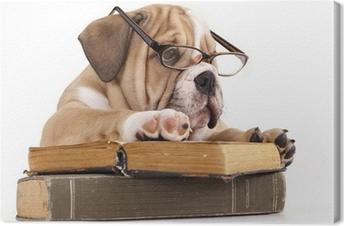 Tableau sur toile Race Bulldog anglais dans des verres et réserver