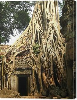 Tableau sur toile Racine de l'arbre à Angkor Wat