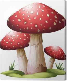 Tableau sur toile Red mushroom
