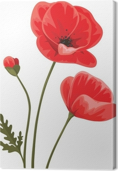 Tableau sur toile Red poppies