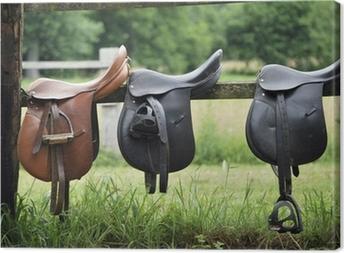 Tableau sur toile Saddles