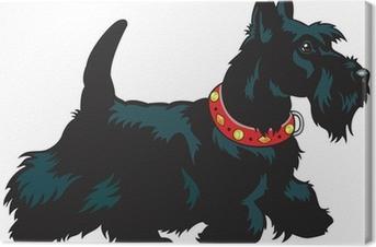 Tableau sur toile Scottish terrier