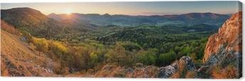 Tableau sur toile Slovaquie forêt au printemps panorama