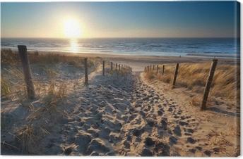 Tableau sur toile Soleil sur le chemin de la plage dans la mer du Nord