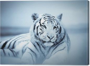 Tableau sur toile Tigre
