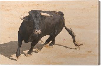 Tableau sur toile Toro Bravo espagnol