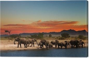 Tableau sur toile Troupeau d'éléphants dans la savane africaine