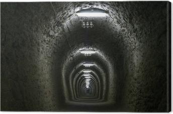 Tableau sur toile Tunnel de la vie