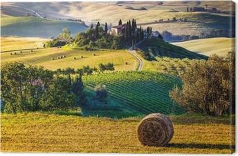 Tableau sur toile Tuscany landscape
