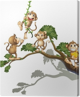 Tableau sur toile Un arbre avec quatre singes