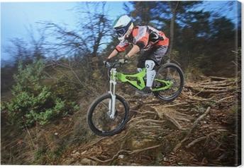 Tableau sur toile Un jeune homme chevauchant un style de descente de vélo de montagne