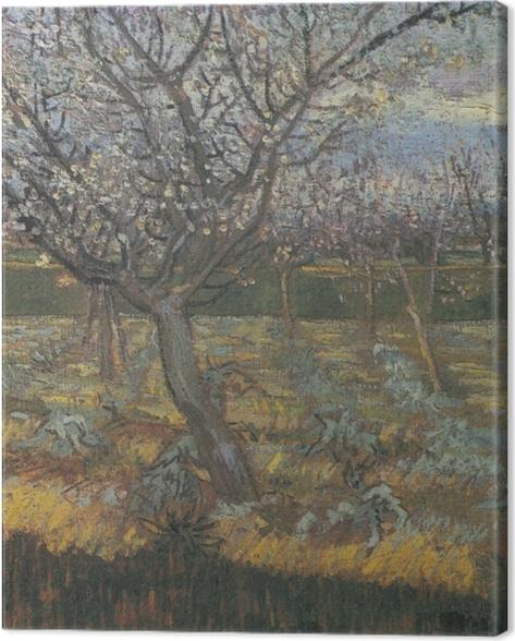 Tableau sur toile Vincent van Gogh - Verger avec des arbres d'abricot en fleurs - Reproductions