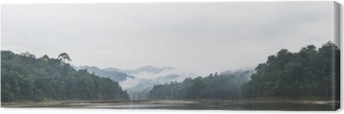 Tableau sur toile Vue panoramique de brouillard du matin et les arbres morts dans la forêt tropicale dense, Perak, Malaisie