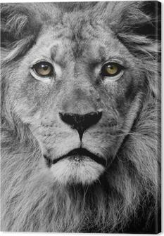 Tableau sur Toile Yeux Lion