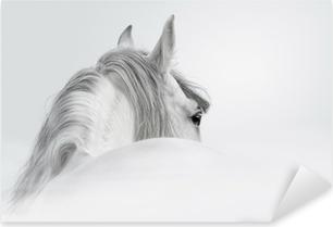 Andalusian hevonen sumussa Pixerstick Tarra