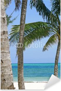 vapaa dating Bahama