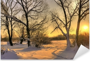 Kaunis talvi auringonlasku puiden kanssa lumessa Pixerstick tarra