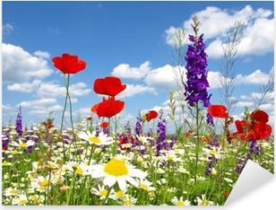 Punainen unikko ja luonnonvaraiset kukat Pixerstick tarra