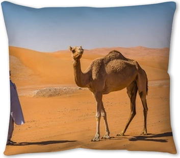 Desert Landscape With Camel Throw Pillow Pixers We Live To Change