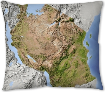 Tanzania Shaded Relief Map Throw Pillow Pixers We Live To Change
