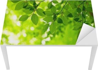 Tischaufkleber und Schreibtischaufkleber Green leaves