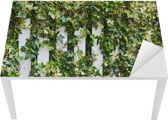 Tischaufkleber und Schreibtischaufkleber Parthenocissus Ranke Kletter dekorative Pflanze