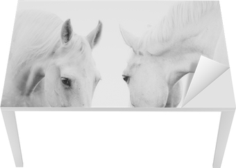 Tischaufkleber und Schreibtischaufkleber Weiße Pferde