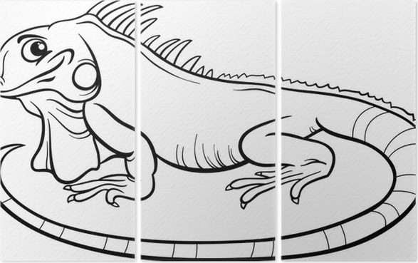 Tríptico Iguana libro para colorear de dibujos animados • Pixers ...