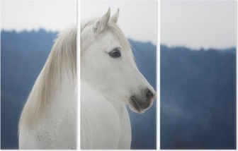 Tríptico Weiße Vollblut Araber Stute im Schnee