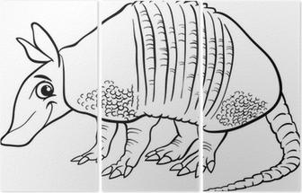 Armadillo Animal Cartoon Coloring Page Wall Mural U2022 Pixers® U2022 We Live To  Change