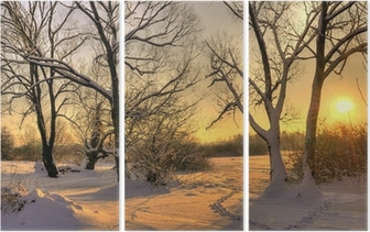 Beautiful winter sunset with trees in the snow Triptych