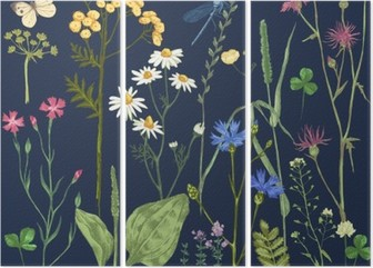 Hand drawn set with herbs and flowers Triptych