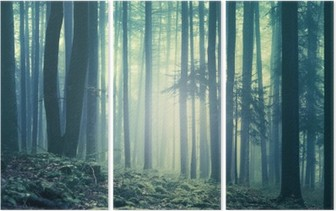 Magical blue green saturated foggy forest trees landscape. Color filter effect used. Picture was taken in south east Slovenia, Europe. Triptych