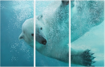 Polar bear underwater attack Triptych