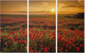 Poppy field at sunset Triptych