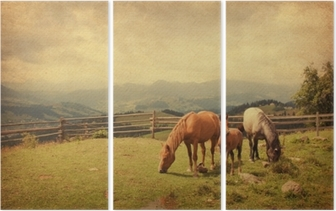 Two horses and foal in meadow. Paper texture. Triptych
