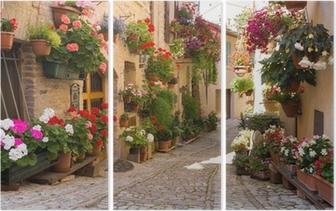 Triptychon Alley mit Blumen, Spello