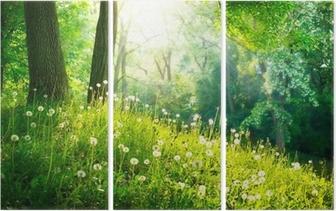 Triptychon Frühling Natur. Schöne Landschaft. Grünes Gras und Bäume