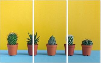 Triptychon Kaktus auf dem Schreibtisch mit gelbem wal