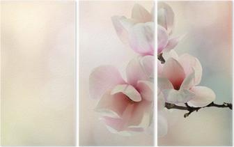 Triptychon Magnolie