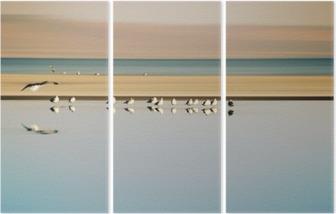 Triptychon Vogelschwarm in Reihe / Ein kleiner Vogelschwarm in Reihe stehender Möwen Einer Brutkolonie am Saltonsee in Kalifornien.