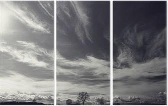 Triptych Svart og hvitt bilde høstlandskap