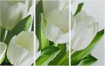 Tryptyk Białe tulipany