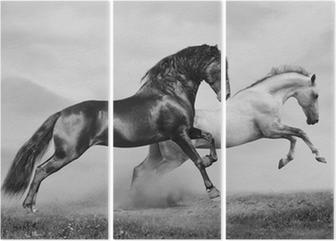 Tryptyk Konie uruchomić