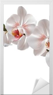 Türaufkleber Weiße Orchidee Blumen