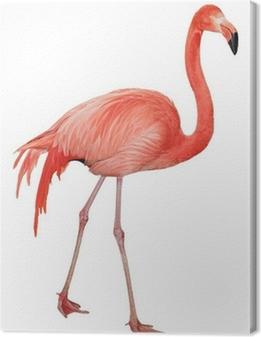 Tuval Baskı Amerikan Flamingo kesme