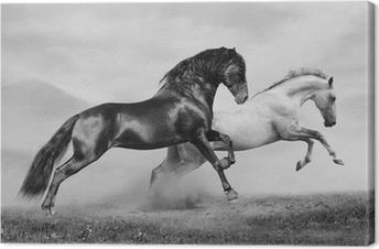 Tuval Baskı Atlar çalıştırmak